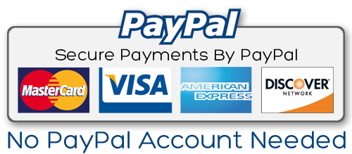thesis writing service that accepts paypal